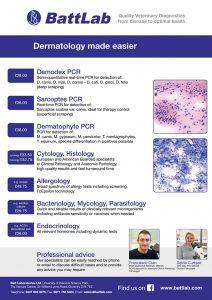 dermatology_flyer_a4_2018